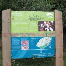 battlehill1